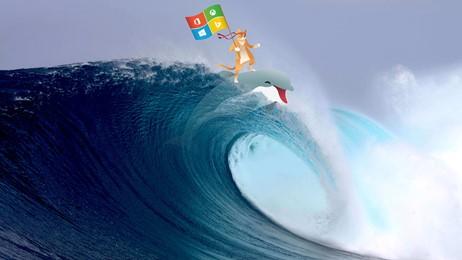 Ninja Cat Surf thumbnail
