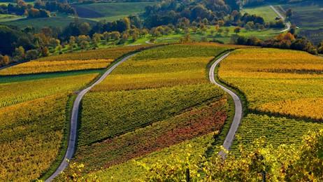 Herbstimpressionen aus Unterfranken thumbnail
