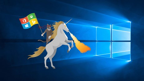Ninja Cat Unicorn Windows 10 Hero thumbnail